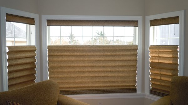 Top down bottom up shades window treatments benefits for Motorized top down bottom up shades