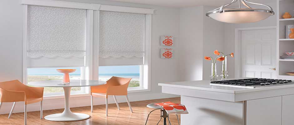 Blackout-Roller-Shades - ZebraBlinds.com