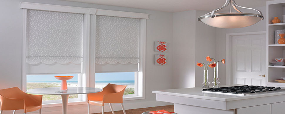 Dual-roller-solar-shades - ZebraBlinds.com